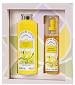 parfum Mimosa