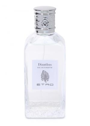 Dianthus Etro für Frauen