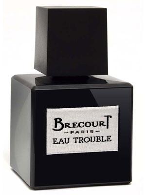 Eau Trouble Brecourt pour femme