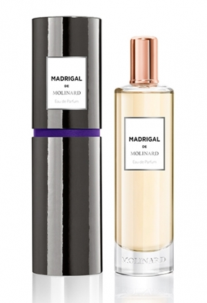 Madrigal Molinard for men