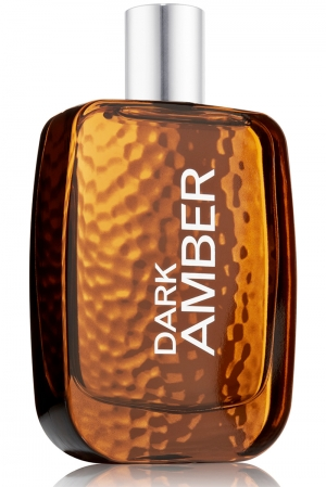 Dark Amber Bath and Body Works para Hombres