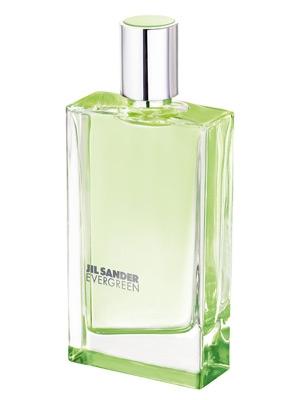 Evergreen Jil Sander de dama