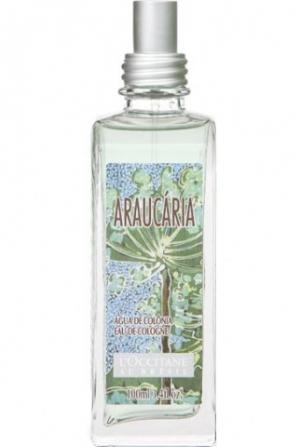 Araucaria L`Occitane en Provence dla mężczyzn