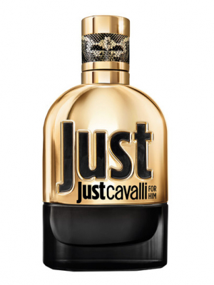 Just Cavalli Gold for Him Roberto Cavalli для мужчин