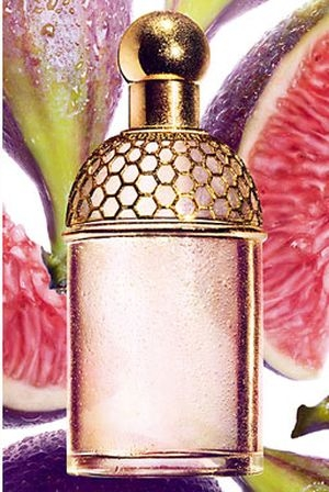 Aqua Allegoria Figue - Iris Guerlain for women