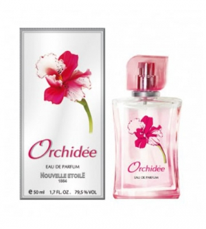 Orchidee Novaya Zarya für Frauen