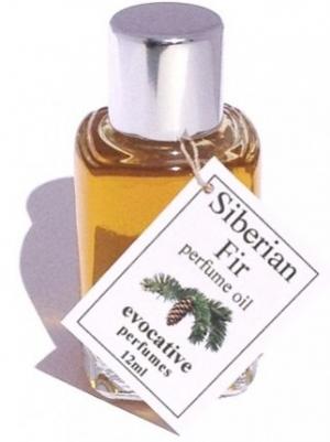 Siberian Fir Evocative Perfumes za žene i muškarce