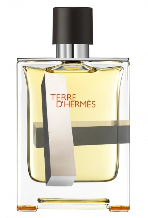 Terre d'Hermes Perspective Hermes for men