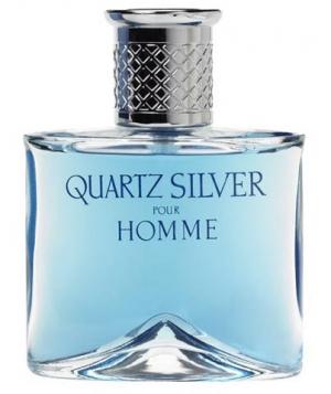 Quartz Silver Molyneux pour homme