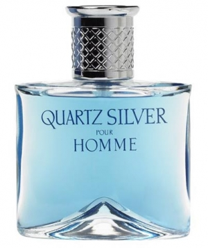 Quartz Silver Molyneux для мужчин