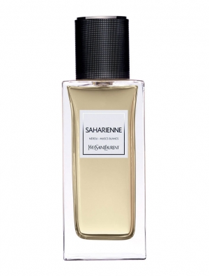 Saharienne Yves Saint Laurent for women and men