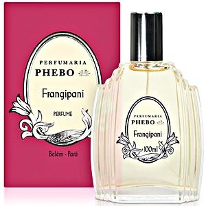 Frangipani Phebo de dama