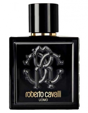 Image result for roberto cavalli uomo