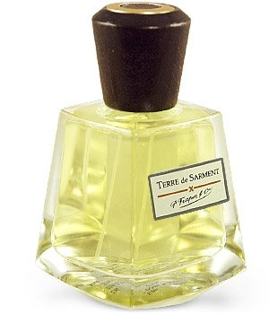 Terre de Sarment Frapin for women and men