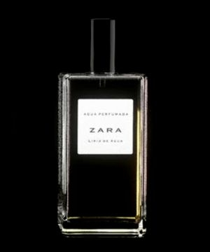 Lirio de Agua Zara de dama