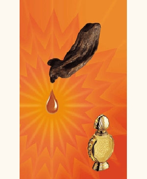 Shatha Al Oudh Rasasi für Frauen und Männer