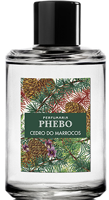Cedro Do Marrocos Phebo für Frauen und Männer