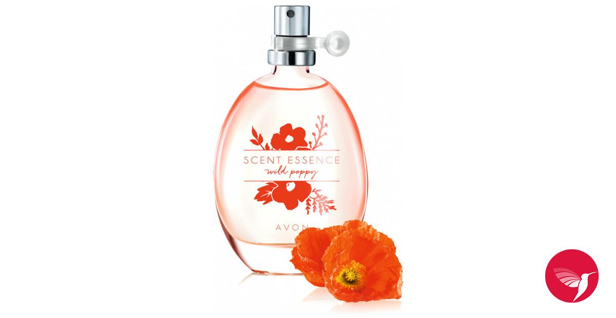 Amazon.com: Coach Poppy Fragrance