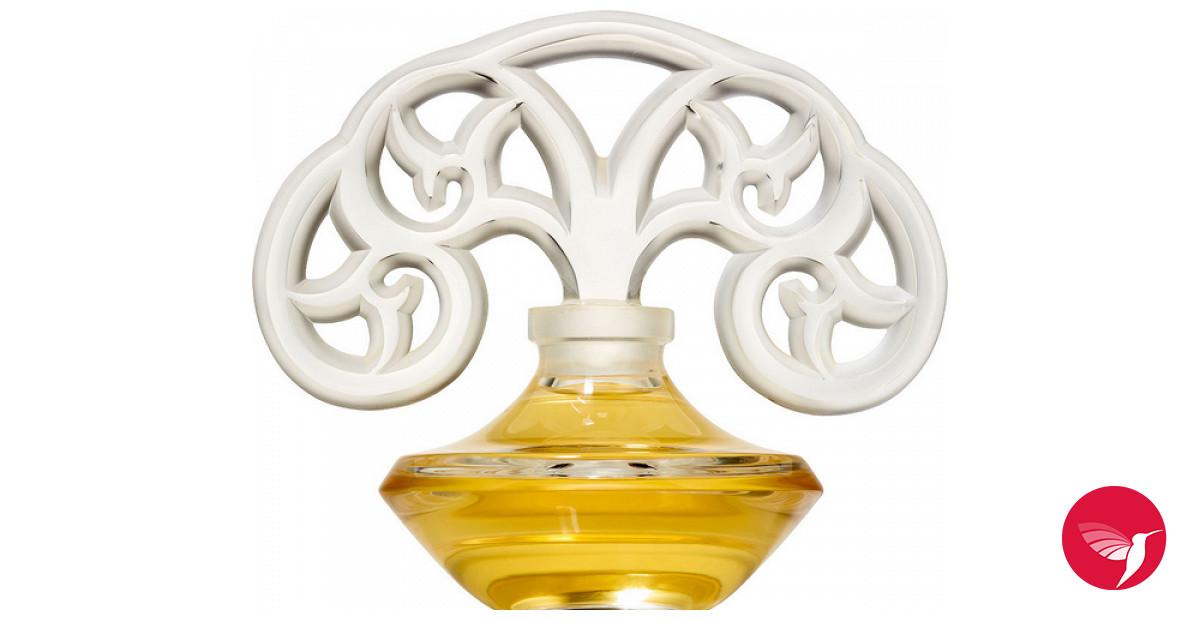 Jardin nocturne shalini parfum ein neues parfum f r for Jardin nocturne