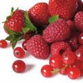 الفواكه الحمراء
