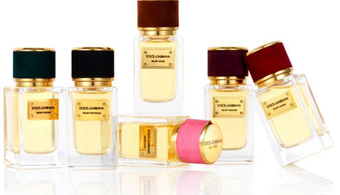 Velvet Wood Dolce Amp Gabbana Perfume A Fragrance For Women