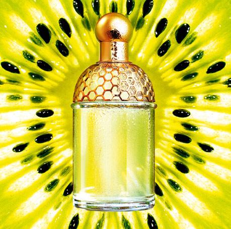 aqua allegoria tutti kiwi guerlain perfume a fragrance for women 2005. Black Bedroom Furniture Sets. Home Design Ideas