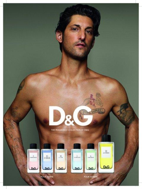 D Amp G Anthology La Force 11 Dolce Amp Gabbana Cologne A