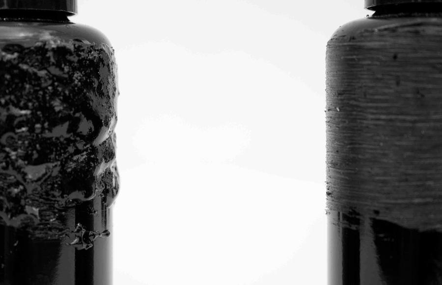 Nononsense 6 nico uytterhaegen perfume una fragancia for Zacate de invierno