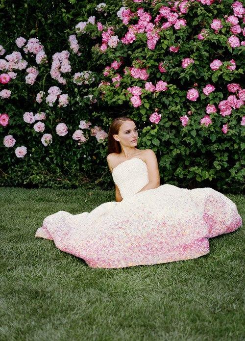 Image Result For Miss Dior Wallpaper