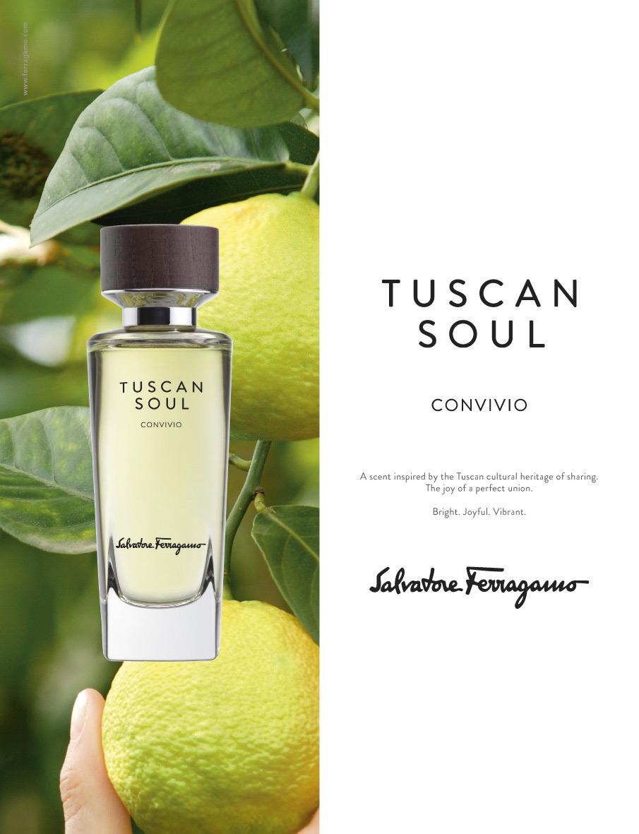 Convivio Salvatore Ferragamo perfume - a fragrance for ...