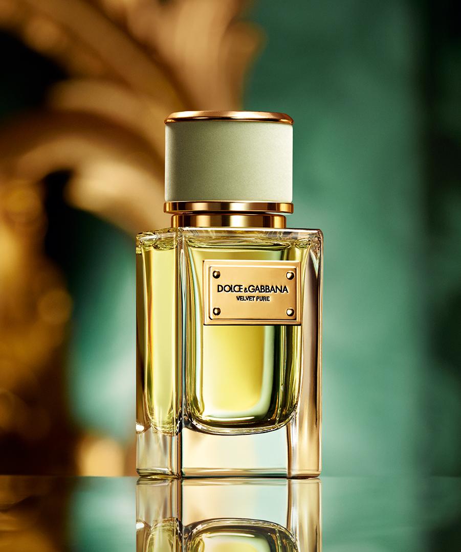 velvet pure dolce gabbana perfume a new fragrance for women 2016. Black Bedroom Furniture Sets. Home Design Ideas