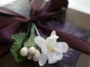 Chocolate: Figure 4: L'Orangerie Roxana Illuminated Perfume unisex Imagini