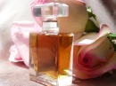 Rosa Roxana Illuminated Perfume for women and men Pictures