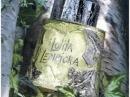 L`Eau au Masculin Lolita Lempicka dla mężczyzn Zdjęcia