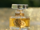 Carmel de Ville En Voyage Perfumes для женщин Картинки