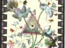 Ete M. Micallef для женщин Картинки