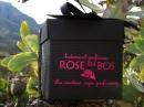 Dark Heart Rose en Bos pour femme Images