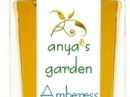 Amberess Anya`s Garden for women and men Pictures