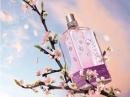 Fleurs de Brignoles (Plum Blossom) di L`Occitane en Provence da donna Foto