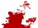 AB Blood Concept unisex Imagini