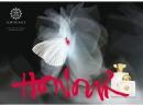 Honour Woman Amouage für Frauen Bilder