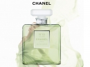Chanel No 19 Poudre Chanel for women Pictures
