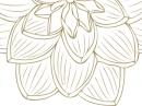 Nilang 2011 Lalique dla kobiet Zdjęcia