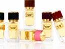 Velvet Patchouli Dolce&Gabbana für Frauen und Männer Bilder