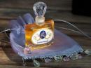 Sparkling Citrus JoAnne Bassett für Frauen und Männer Bilder