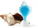 Conch Seajewels de barbati Imagini