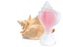 Pink Conch Seajewels für Frauen Bilder