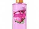 Strawberries and Champagne Victoria`s Secret de dama Imagini