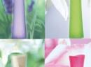 Pur Desir de Gardenia Yves Rocher для женщин Картинки