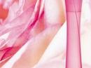 Pur Desir de Rose Yves Rocher de dama Imagini